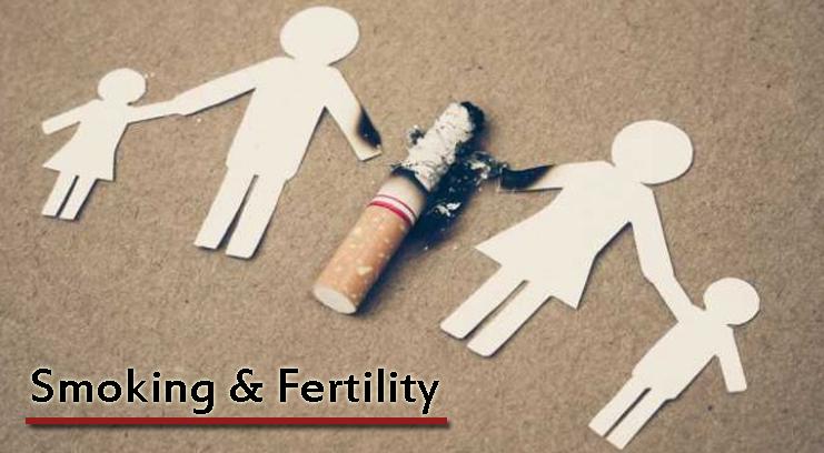 Fertility and Smoking
